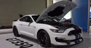 New Muscle Cars 2015 Shelby GT350 1