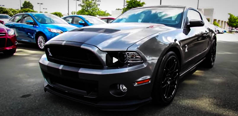 Modern Muscle Cars Ford Mustang Shelby GT500